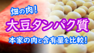 大豆 畑の肉